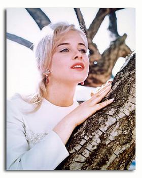(SS3362268) Sue Lyon Movie Photo
