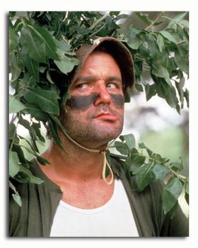 (SS3374033) Bill Murray Movie Photo
