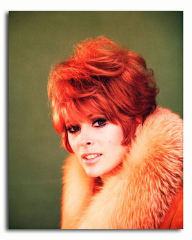 (SS3454516) Jill St. John Movie Photo