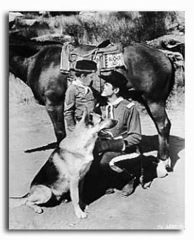 (SS2224352)  The Adventures of Rin Tin Tin Television Photo