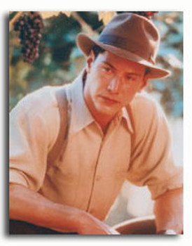 (SS2800161) Keanu Reeves  A Walk in the Clouds Movie Photo