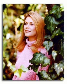 (SS2941562) Elizabeth Montgomery  Bewitched Movie Photo