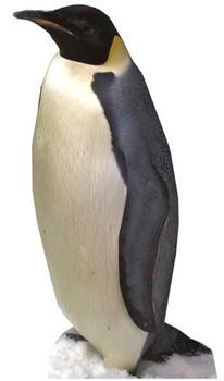 Penguin - Lifesize Cardboard Cutout / Standee