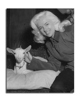 Diana Dors Movie Photo (SS2457013)