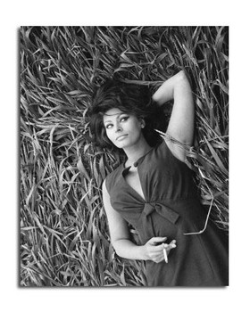Sophia Loren Movie Photo (SS2457507)