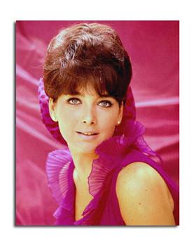 Suzanne Pleshette Movie Photo (SS3648671)