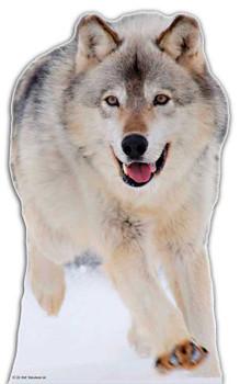 Wolf - Lifesize Cardboard Cutout / Standee