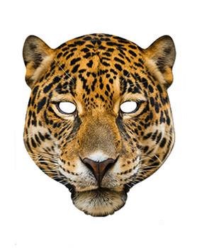 Leonardo teenage mutant ninja turtles face mask ssf0009 for Cheetah face mask template