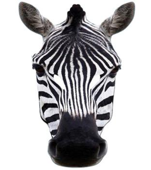 Zebra Animal Card Party Face Mask