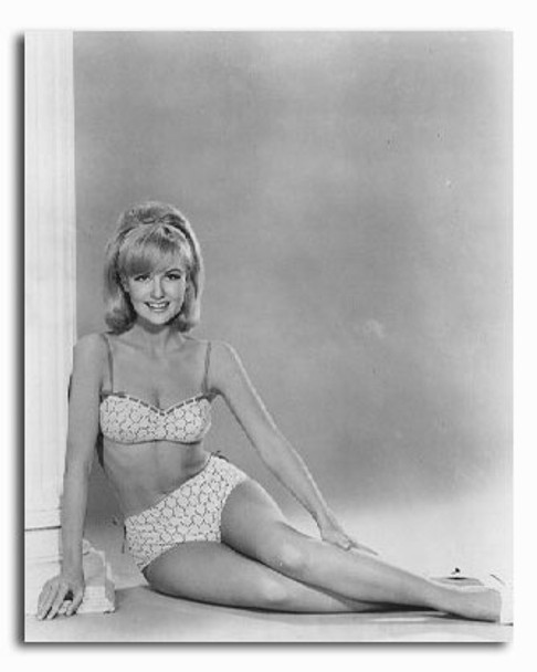 (SS2147652) Shelley Fabares Movie Photo