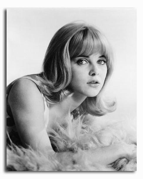 (SS2317744) Sue Lyon Movie Photo