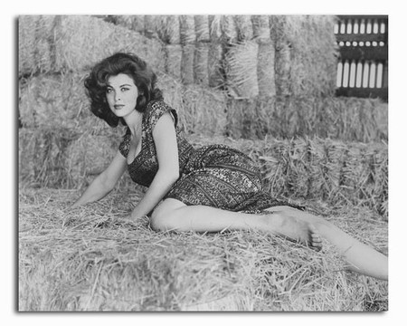 SS2329301 Movie picture of Tina Louise buy celebrity
