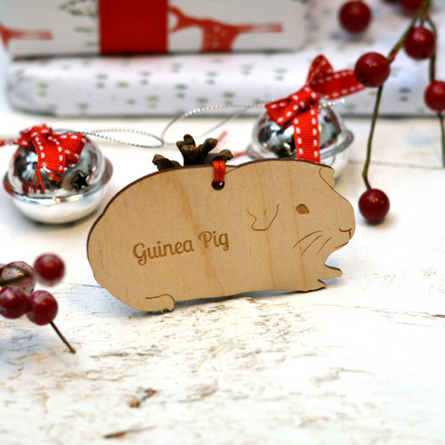 Personalised Guinea Pig Decoration