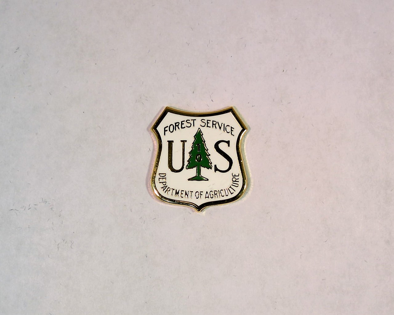 US Forest Service Years of Service Pin (10 years)