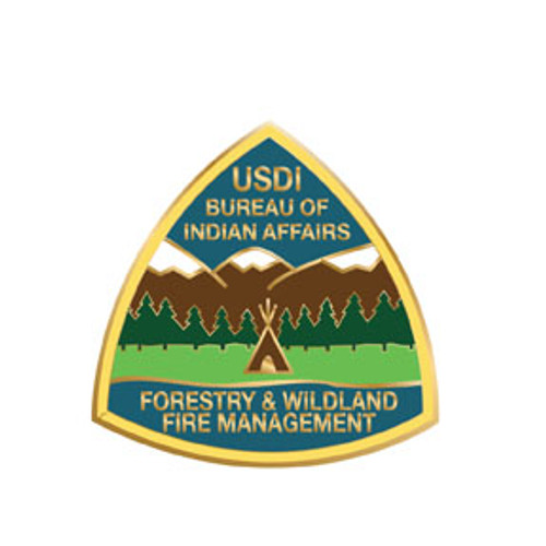 Bureau of Indian Affairs Forestry & Wildland Fire Management Pin