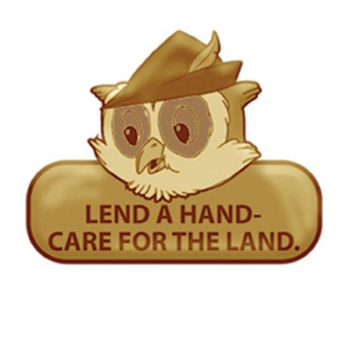 Woodsy Slogan Brass Pin