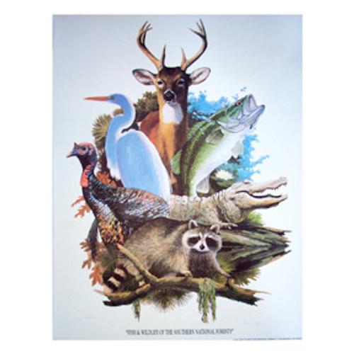 Southern Region Wildlife Print