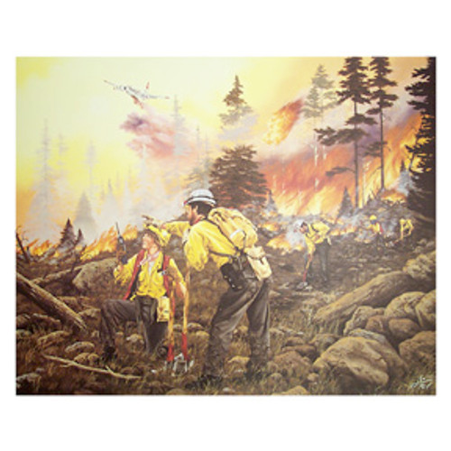 1987 FOREST FIRES CAMPAIGN Limited Edition Print