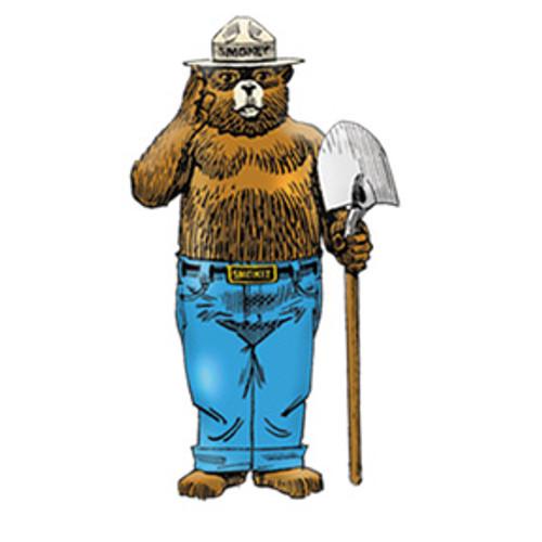 Enamel Standing Smokey Bear Pin
