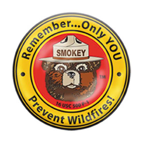 Smokey Bear Pin (Round)