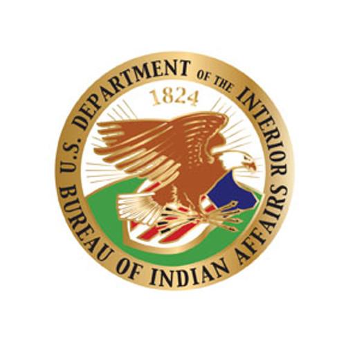 Bureau of Indian Affairs DOI Pin