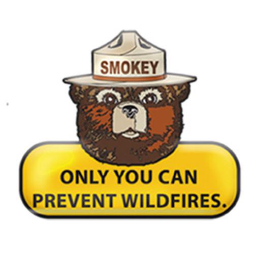 Enamel Smokey Bear Slogan Pin