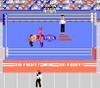 Pro Wrestling Nintendo NES video gameplay image pic