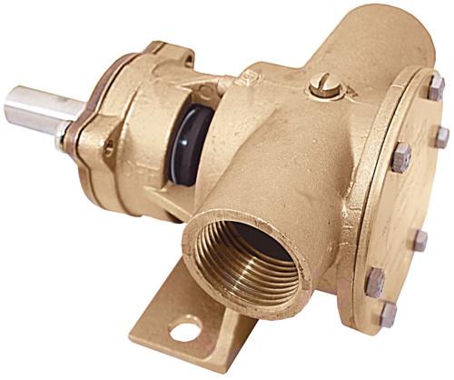"Pump - Bronze Flexible Impeller Pump 1"" BSP"