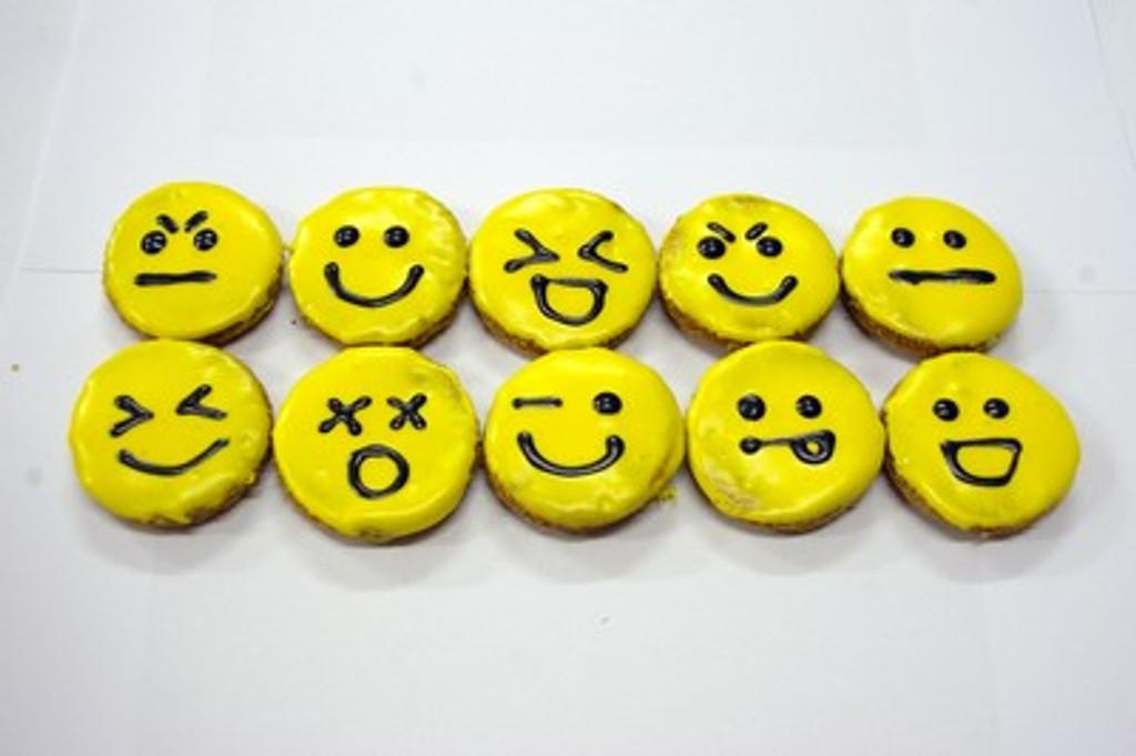 Emoji Gourmet Dog Treats - 4pce by Huds and Toke
