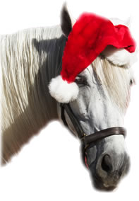 christmas-horse.jpg