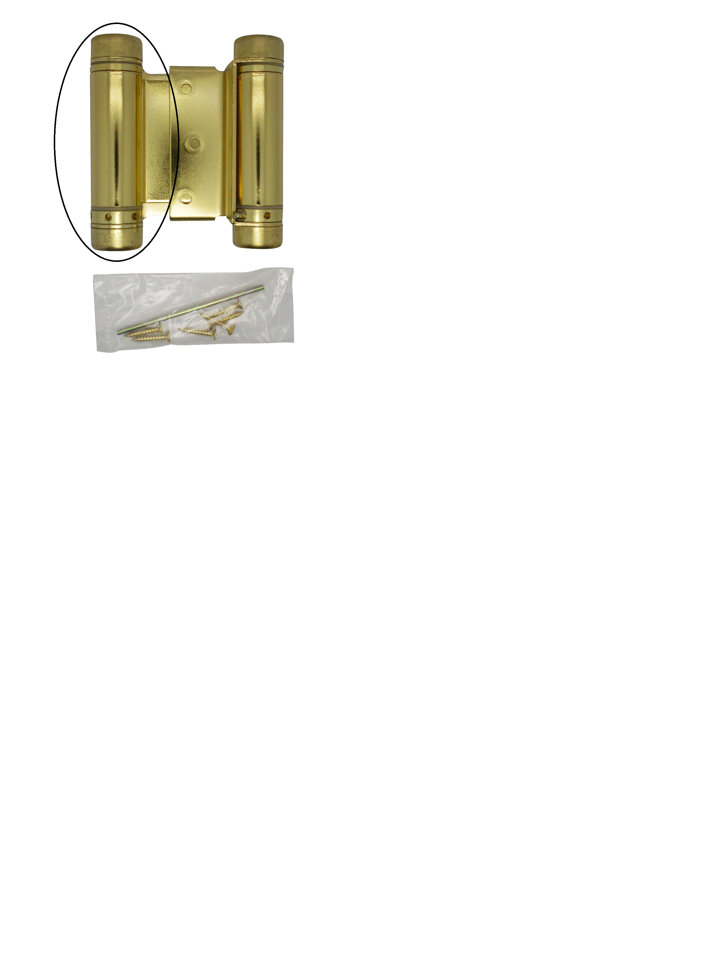 Brass Spring Hinge