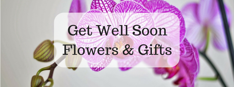 Get Well Flowers from Midwood Flower Shop a Charlotte Florist