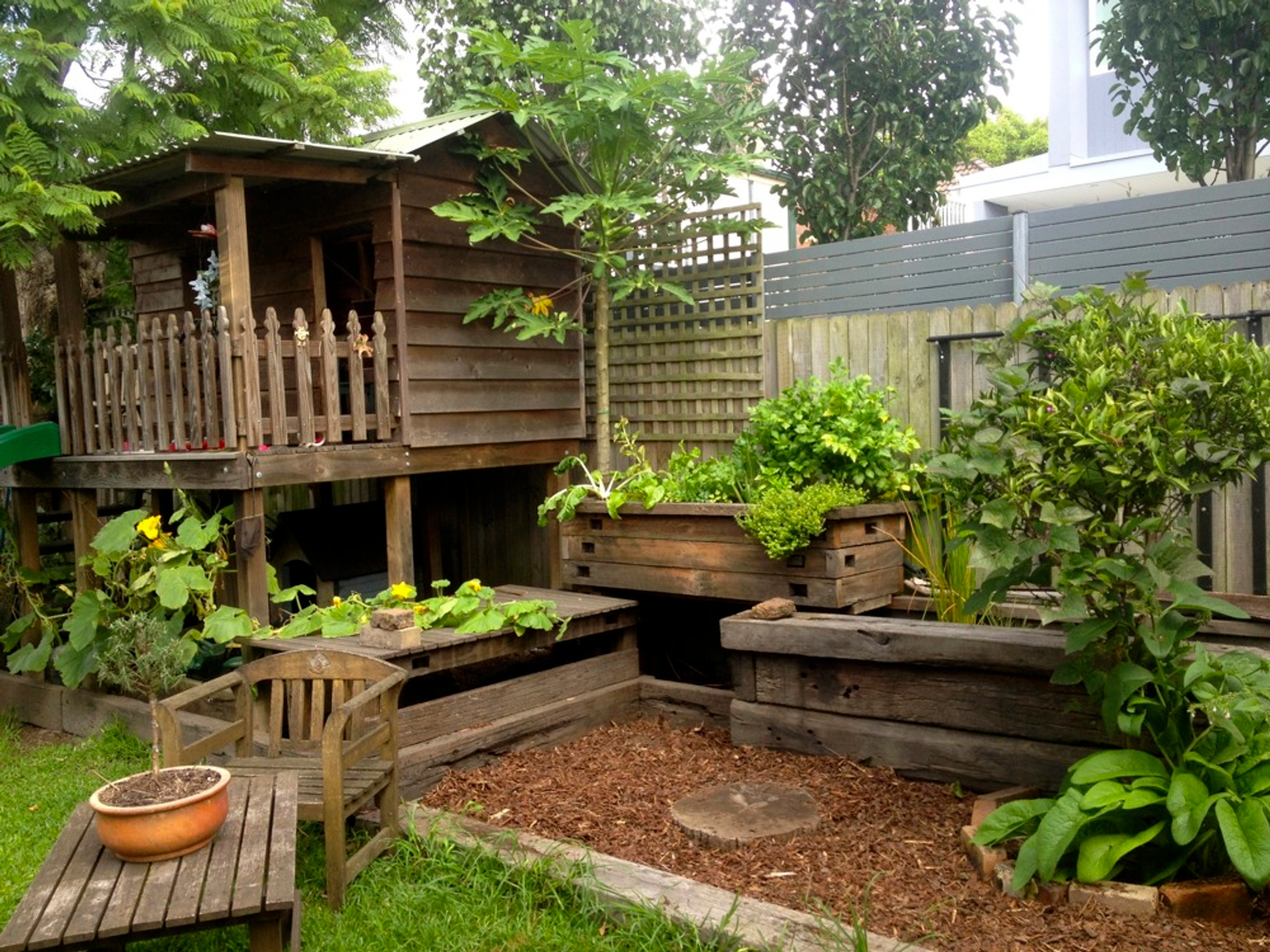 Back Yard Hydroponics   Eat Well With 80% Lees Food Expense