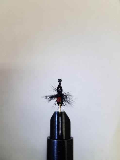 Size 8 Ant Powder Coated