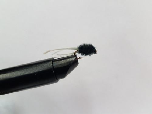 Maggot Fly