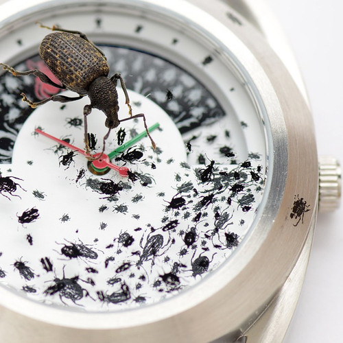 Mr. Jones Inordinate Fondness for Beetles Limited Edition (81-V6)