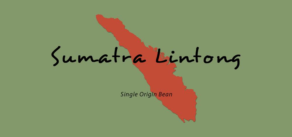 Sumatra Lintong