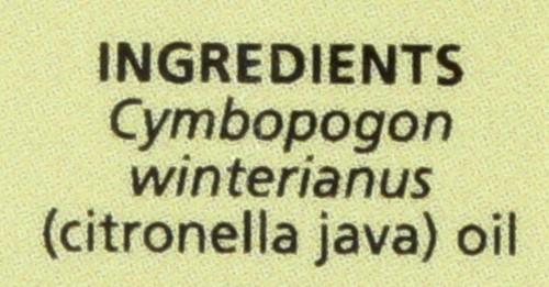 Citronella Java Essential Oil Citronella Java 0.5 Fl oz 15 Ml
