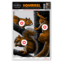 "Life Size Squirrel 12.5""x19"" Hunting Shooting Paper Targets"