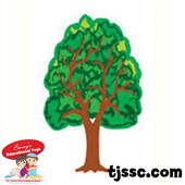 Small Tree Card Stock