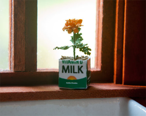 Marigold in a Milk Carton Kit