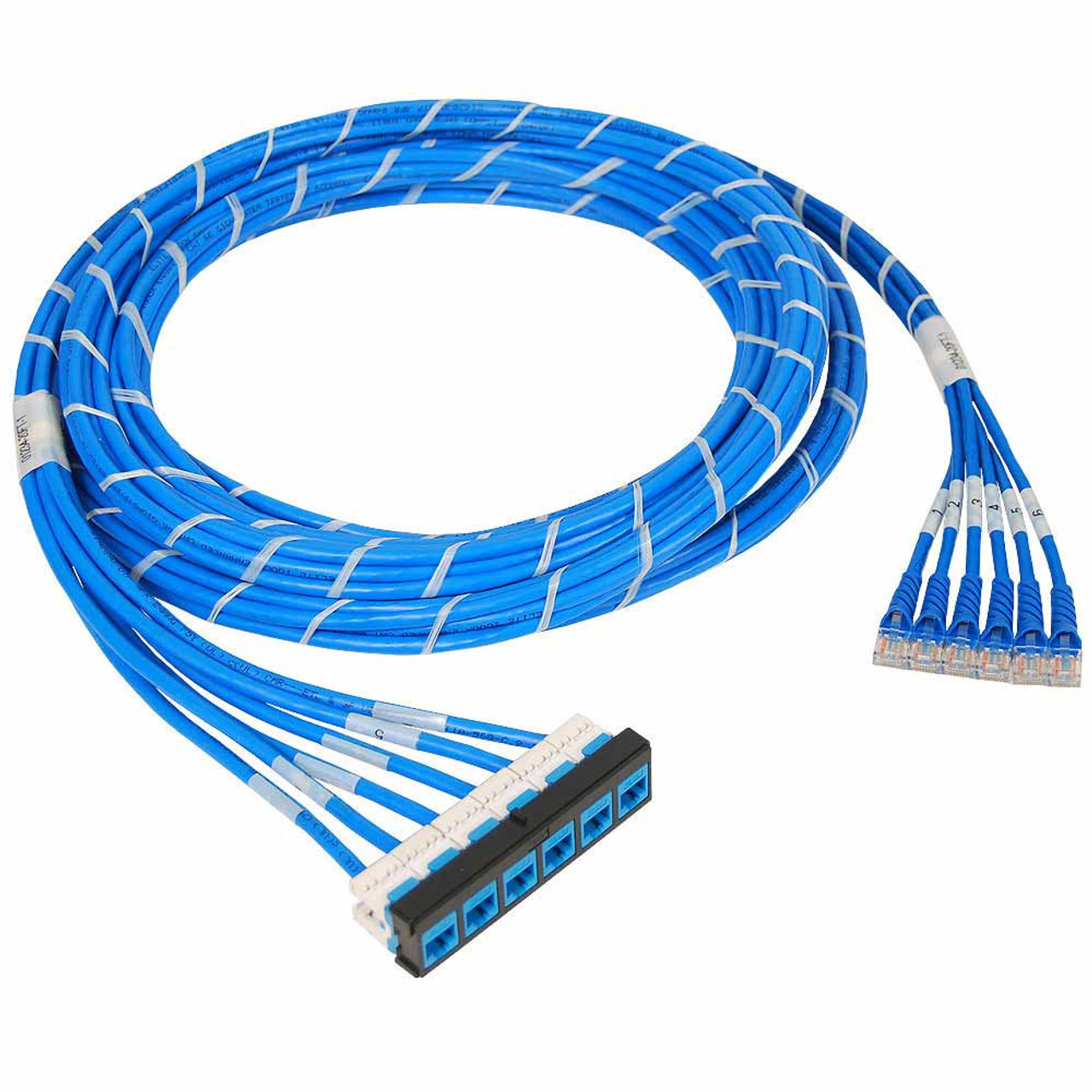 Pre Terminated Cat 6 Cassette Patch Panel Bezel To Cords Wiring Utp With Cmr Cat6e Cable Assembly