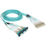 Preterminated Cassette Fiber Optic LC Patch Panel with Cable Assembly 24 Fibers Bezel to Patch Cords