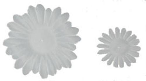 White Gerber Daisy Petals
