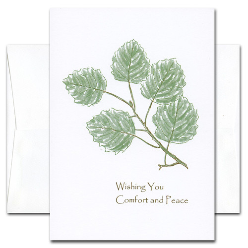 "Sympathy Card - Comfort cover is an botanical illustration of green leaves on a branch with the words ""Wishing you comfort and peace"""