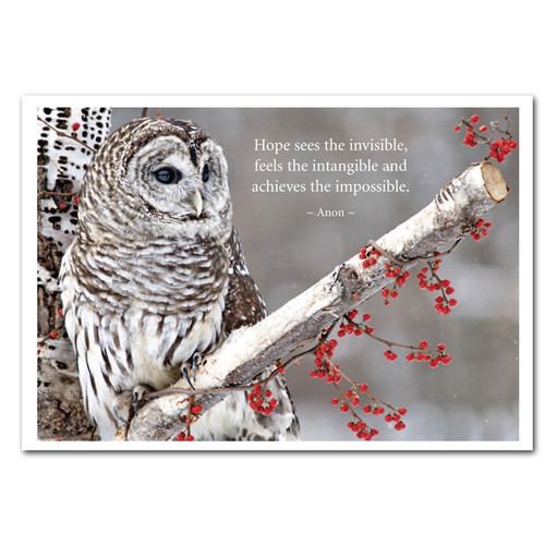 """Hope New Years Card:  Cover photo shows gray owl on branch with quote, """"Hope sees the invisible, feels the intangible, and achieves the impossible. - Anon."""""""