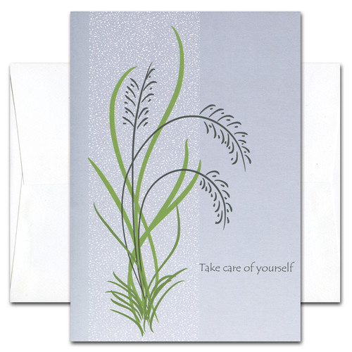 Get Well Cards: Take Care - box of 10 cards & envelopes