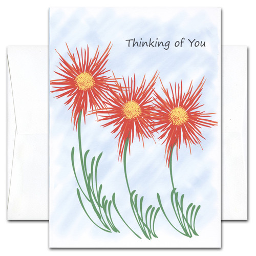 Thinking of You Cards: Brighter Days - box of 10 cards & envelopes