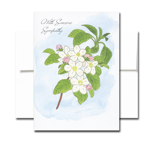 Sympathy Cards: Apple Blossom - box of 30 cards & 32 envelopes