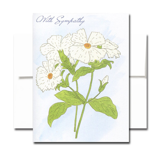Sympathy Cards: Campion - box of 30 cards & 32 envelopes